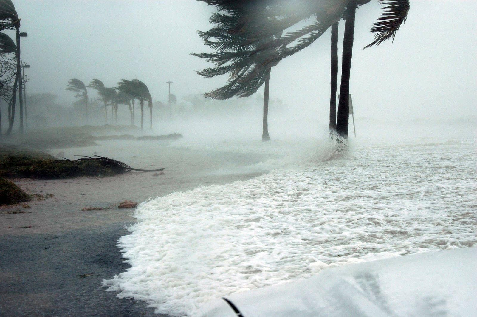 How will the Hurricanes impact the Economy?