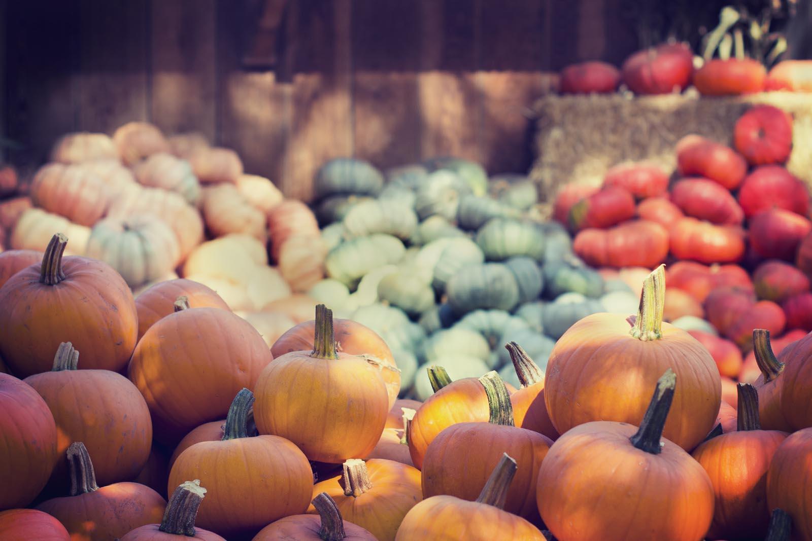 October has been a 'treat' for investors
